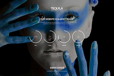 时尚网站设计