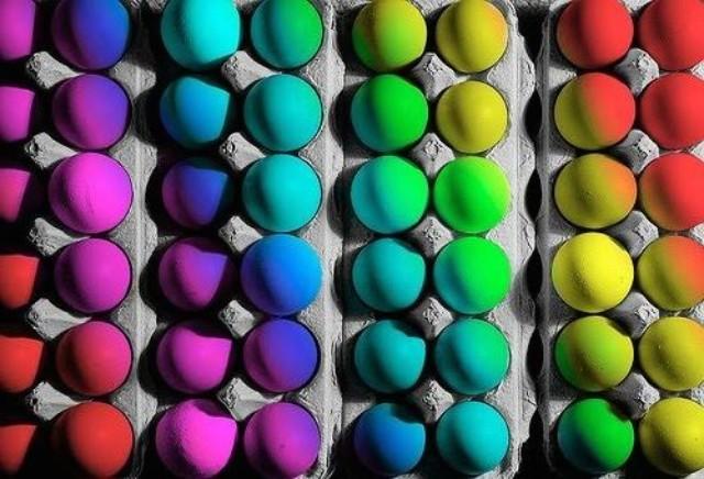 为什么都靠鸡过日子的,你的蛋这么难卖